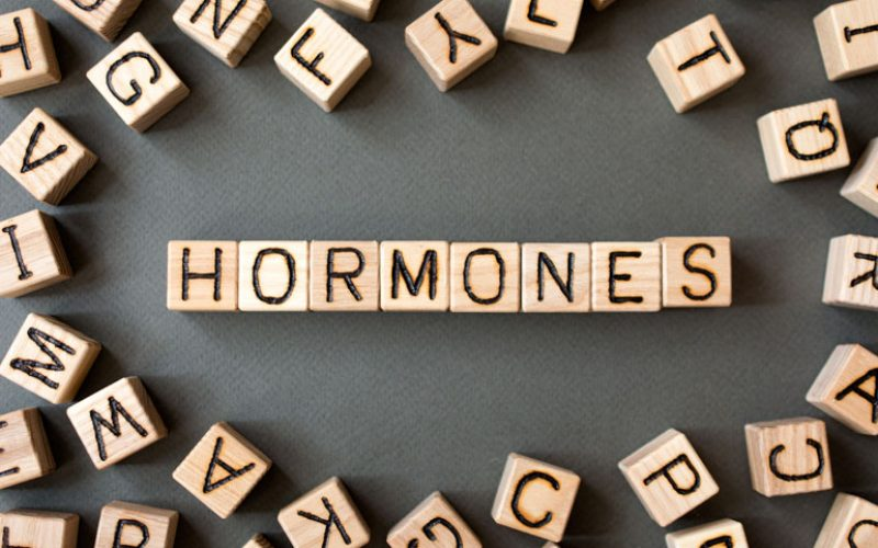 Big Picture of Hormonal Health