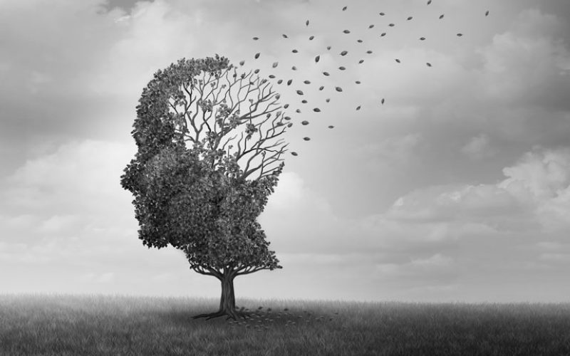 Preventing and Reversing Cognitive Decline