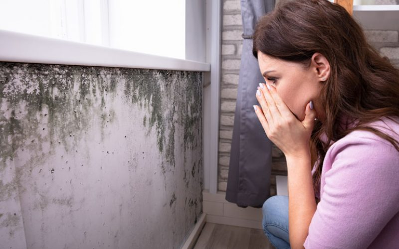 Consider Mold Mycotoxins in Anxiety, Pain and Addiction