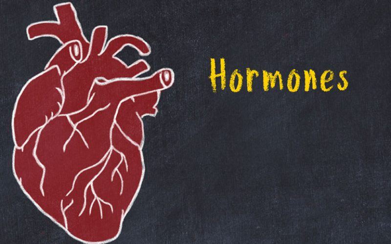 Hormones and Heart: Goldilocks Conducts a Symphony!
