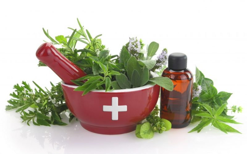Essential Oils and Toxic Mold What You Should Know