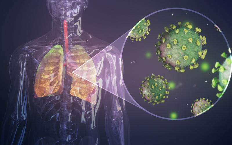 Do you have Candida or Mold Exposure? What you need to know about COVID-19.